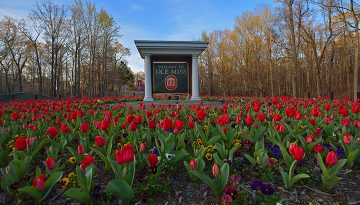 The Jackson Avenue entrance to campus is shown with beautiful red tulips.